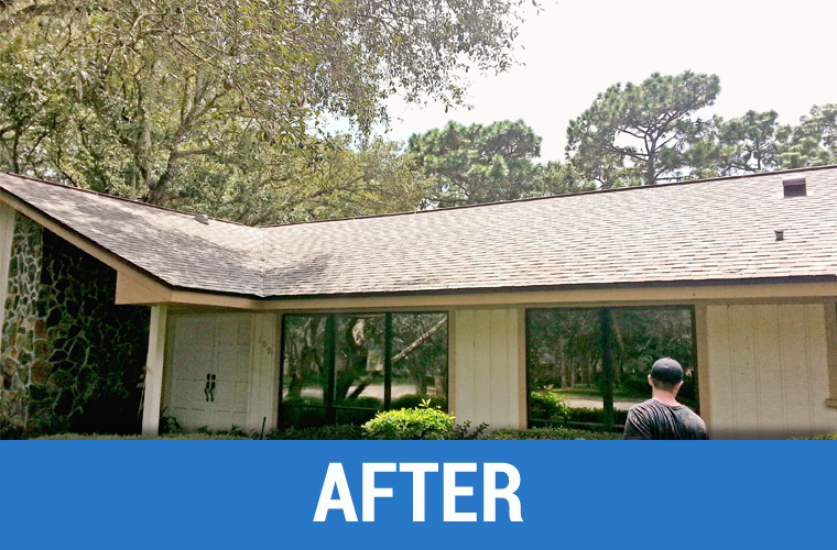 After Roof Cleaning 1