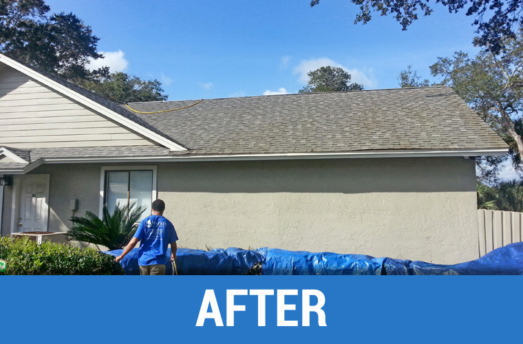 After Roof Cleaning 3