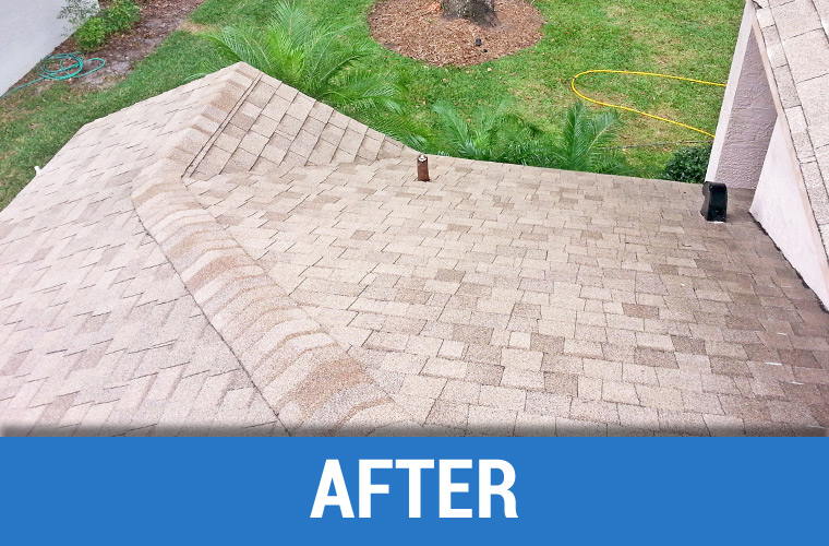 After Roof Cleaning 5