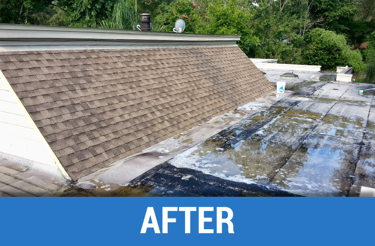 After Roof Cleaning 6